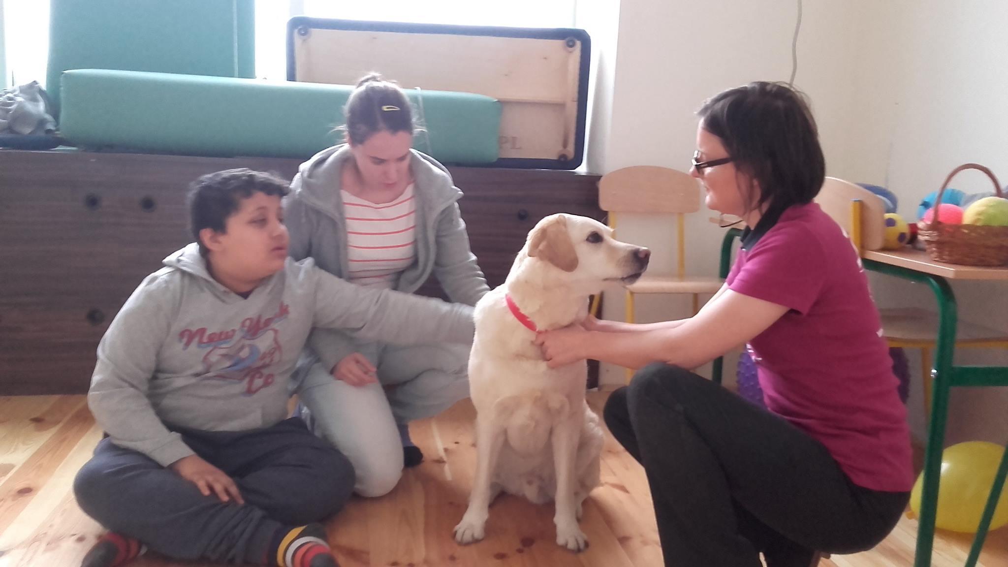 Zajęcia z psem asystującym
